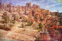 Journey Through Red Canyon by John Bailey