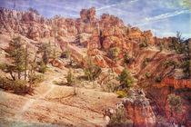 Journey Through Red Canyon von John Bailey