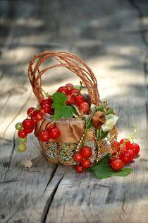 Früchte Korb von Claudia Evans