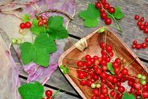 Still life mit roten  Johannisbeeren von Claudia Evans