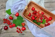 Rote Beeren Still life von Claudia Evans