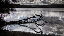 Winter at Narrabeen Lakes von christophrm