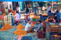 Orange von Miro May