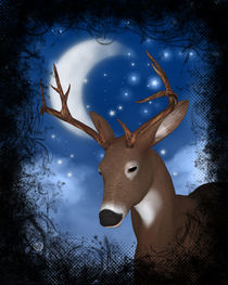 Hirsch in der Nacht by Conny Dambach