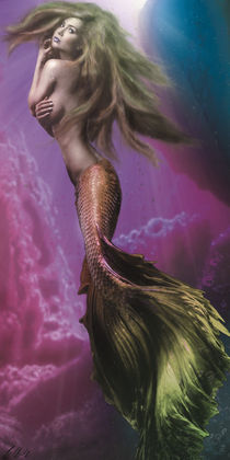 The Mermaid by Stefan Obili