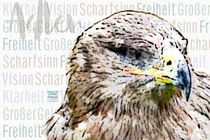 Adler - Großer Geist by Astrid Ryzek