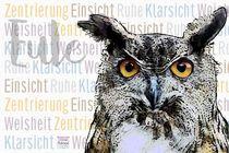 Eule Uhu - Zentriert mit Weitblick by Astrid Ryzek