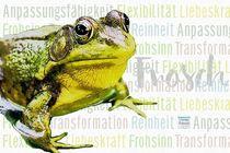 Frosch - Flexibel und im Liebesglück von Astrid Ryzek