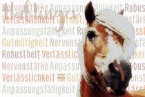 Haflinger - Gelassene Vitalität by Astrid Ryzek