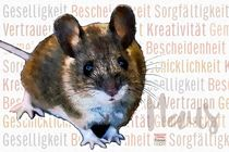 Maus - Die Lebenskünstlerin by Astrid Ryzek