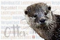 Otter - Der Individualist by Astrid Ryzek
