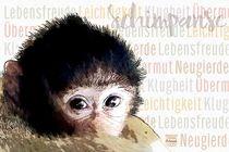 Schimpanse - Unbeschwerte Neugierde von Astrid Ryzek