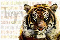 Tiger - Friedvoller Krieger von Astrid Ryzek