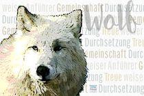Weißer Wolf - Weiser Anführer von Astrid Ryzek