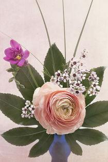 Flowers / 6 von Heidi Bollich