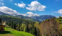 To Monastery Prislop  von Enache Armand Iustinian