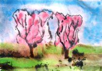 Kirschenblüte 3 by Gerhard Stolpa