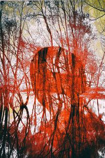 Melancholia  by Bastian  Kienitz
