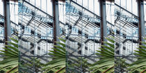 Im fürstlichen Gewächshaus, Collage 2 von Hartmut Binder