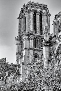 Notre Dame de Paris by Silvia Eder