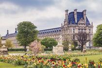 Louvre de Paris von Silvia Eder