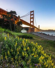 Golden Gate Bridge by Klaus Tetzner