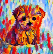 Yorkshire Terrier  von Chris Butler