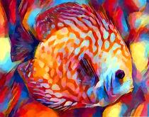 Discus Fish von Chris Butler