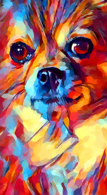 Chihuahua Watercolor by Chris Butler