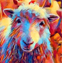 Sheep Watercolor von Chris Butler