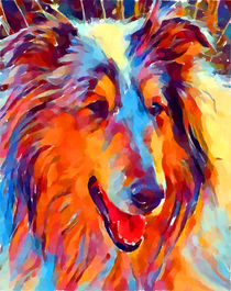 Collie Watercolor by Chris Butler