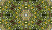 FLOWER GARDEN 1 by Hardy Wagner