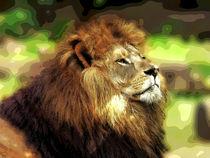 Lion Art by Huanita Zimmermann