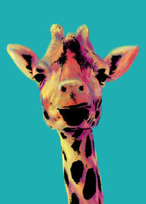 Giraffe by Arnaldo Pino
