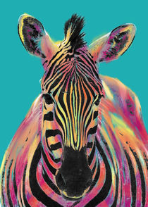 Zebra von Arnaldo Pino