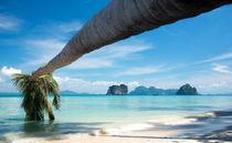Tropical beach von Pieter Tel
