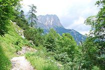 Bergpfad am Untersberg... von loewenherz-artwork