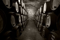 Barrels of Porto  by Rob Hawkins