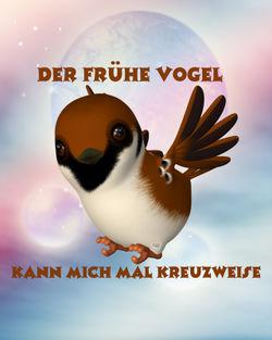 Der-fruhe-vogel
