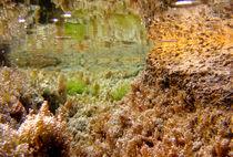 Underwater by leemoon