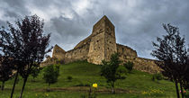 Medieval fortress by Enache Armand Iustinian