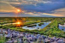 Sonnenstrahlen am Wattenmeer