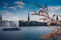 Frühling an der Alster von Thomas Sonntag