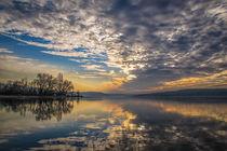 Himmel in Bewegung - Insel Reichenau von Christine Horn