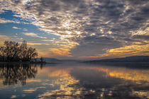 'Himmel in Bewegung II - Insel Reichenau ' von Christine Horn