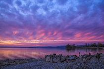 After Sundown - Insel Reichenau von Christine Horn