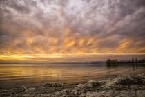 Kurz nach Sonnenuntergang auf der Insel Reichenau - Bodensee by Christine Horn