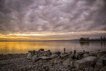 Abendstimmung auf der Insel Reichenau - Bodensee by Christine Horn