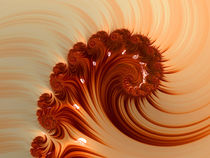 Orange Nautilus by Elisabeth  Lucas