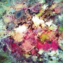 Raspberry rocks von Keith Mills